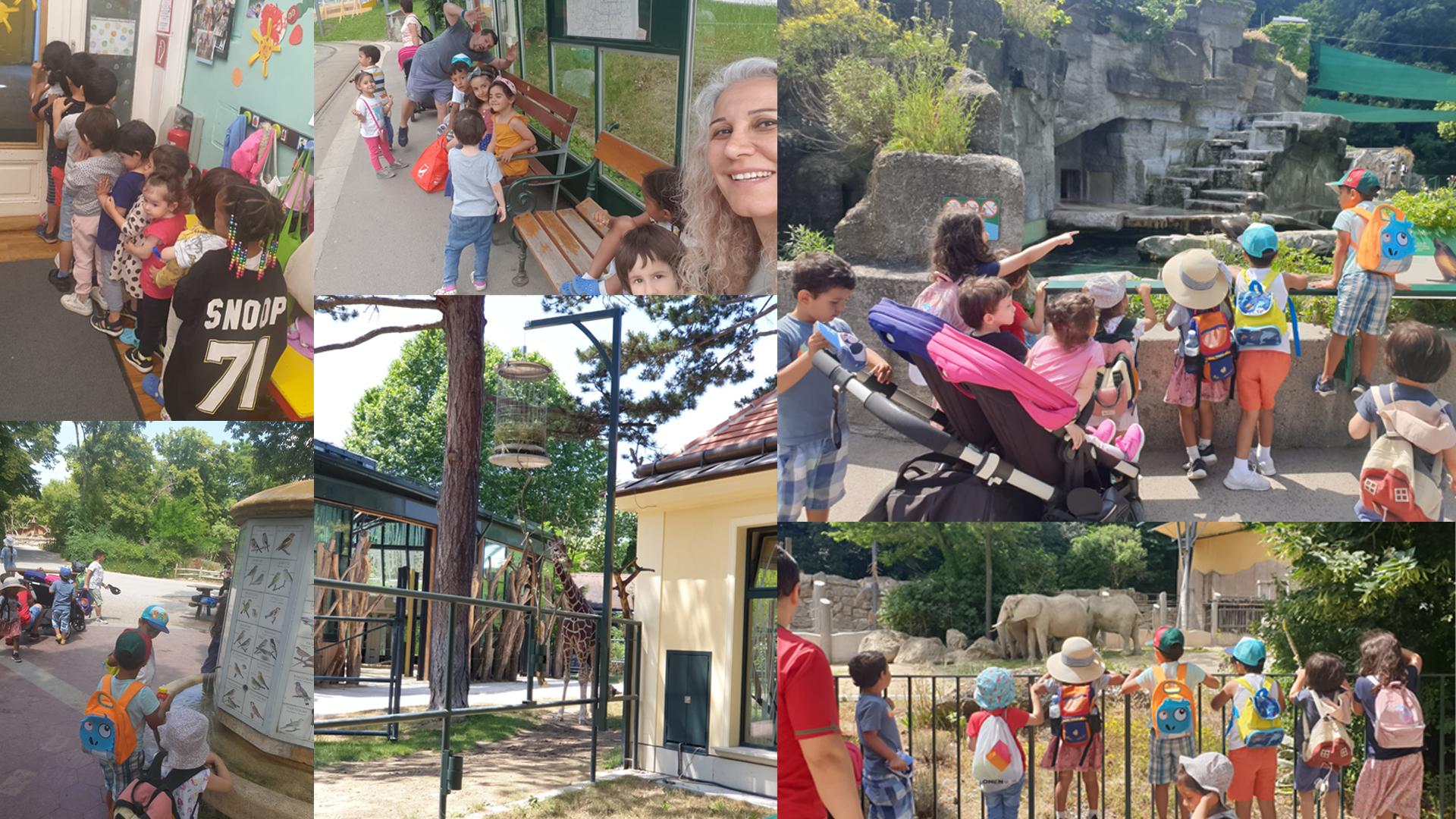 Kindergruppe Aladdin - Ausflug in den Tiergarten